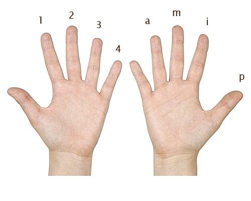 Easy finger exercises for guitar